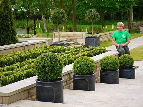 Professional Garden Maintenance Services Stockton and Darlington
