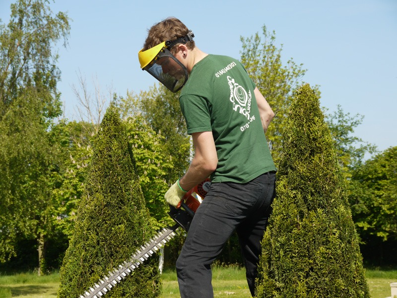 Garden maintenance, hedge cutting, hedge trimming, lawn mowing, lawn edging, lawn treatments, garden tides, tidy ups, weeding, borders turned, stump grinding, jet washing, sweeping, borders tidy, pruning, cutting back, planting shrubs, removing shrubs, Green Onion Landscaping