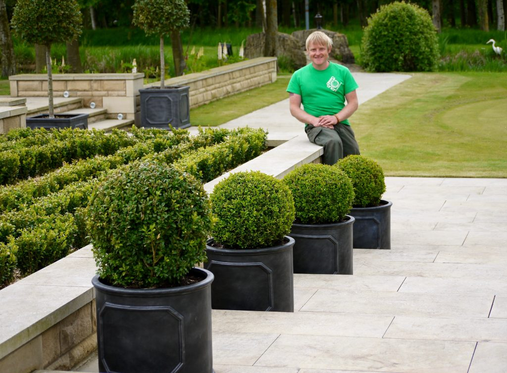 soft landscaping garden design plants trees shrubs flowers buxus balls