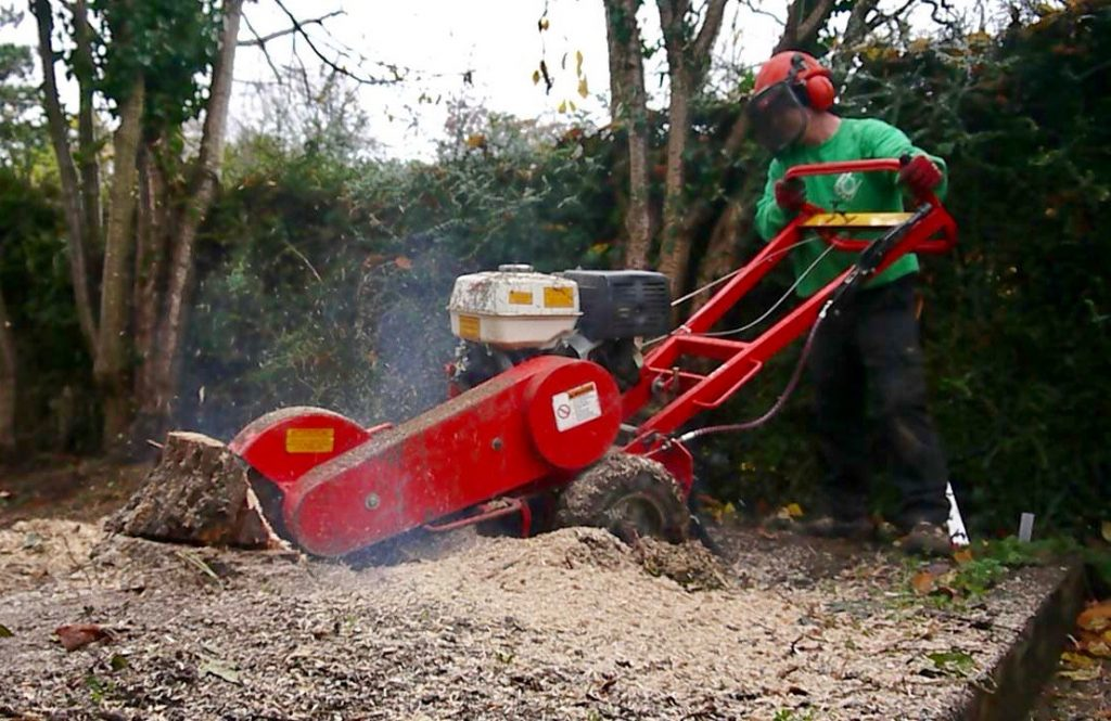 tree stump removal, stump, grinding, stump grinding, tree stump removal, Green Onion landscaping, Stockton, Middlesbrough, Darlington, landscapers, Landscaping, Teesside