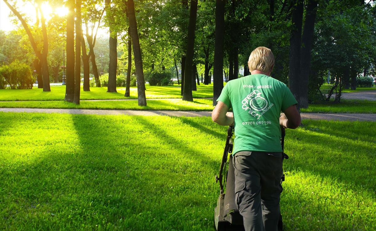 Professional garden maintenance services stockton and for Professional garden maintenance