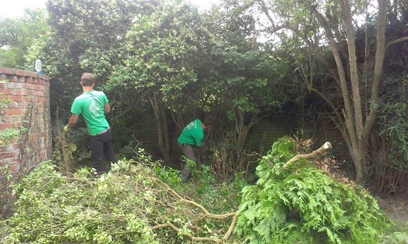 garde maintenance, garden tidy, garden clearance, Stockton, Middlesbrough, Darlington, Green Onion Landscaping, landscapers, Landscaping, Gardeners