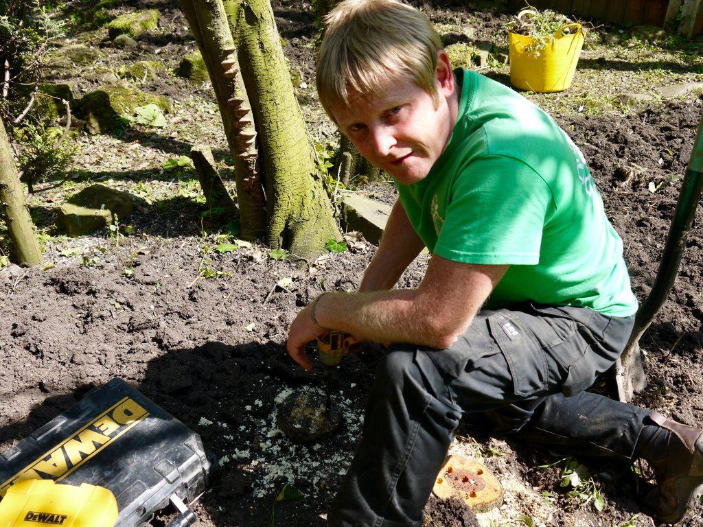 tree removal, tree stump, tree surgery, garden maintenance, garden tidy, garden clearance, Stockton, Middlesbrough, Darlington,Landscapers, landscaping, Gardeners