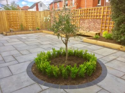 Green Onion Landscaping, Landscaper gardeners, gardeners, garden design, buxus hedging, paving, trellis, brick walls, patio, olive tree, soft landscaping, Teesside, Norton, Stockton, TeesValley, Durham, Ingleby Barwick, North Yorkshire, County Durham, Benches, fencing, decking, paving, patios, sandstone, soft landscaping, planting,