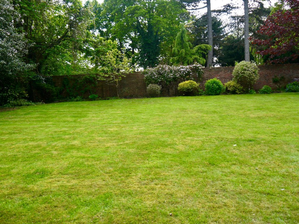Green Onion Landscaping, landscapers, landscaping, garden clearance, garden tidy, gardener, Stockton, Middlesbrough, Darlington ,County Durham, lawn mowing, hedge trimming, borders turned, weeding, feeding,