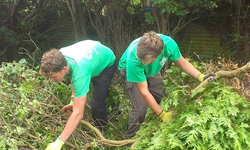 shrub removal, tree felling, tree removal, green waste disposal, Green Onion Landscaping, Garden maintenance, garden tidy, garden clearance, professional landscapers, soft landscaping, Stockton, Middlesbrough, Darlington