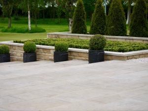 Contemporary garden design, sleek, modern, gardens, Green Onion landscaping, Buxus, straight lines, clean cut,Stockton