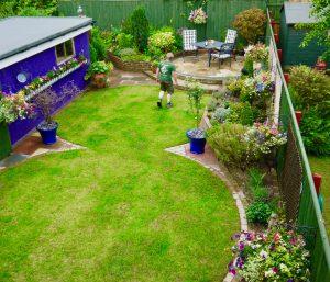 soft landscaping, garden design, landscapers, landscaping, shrubs, trees, flowers, Green Onion Landscaping, Teesside, Middlesbrough, Stockton, Billingham, Wynyard, Stillington, Stainton, Yarm, Borders,